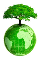 tree green earth environment
