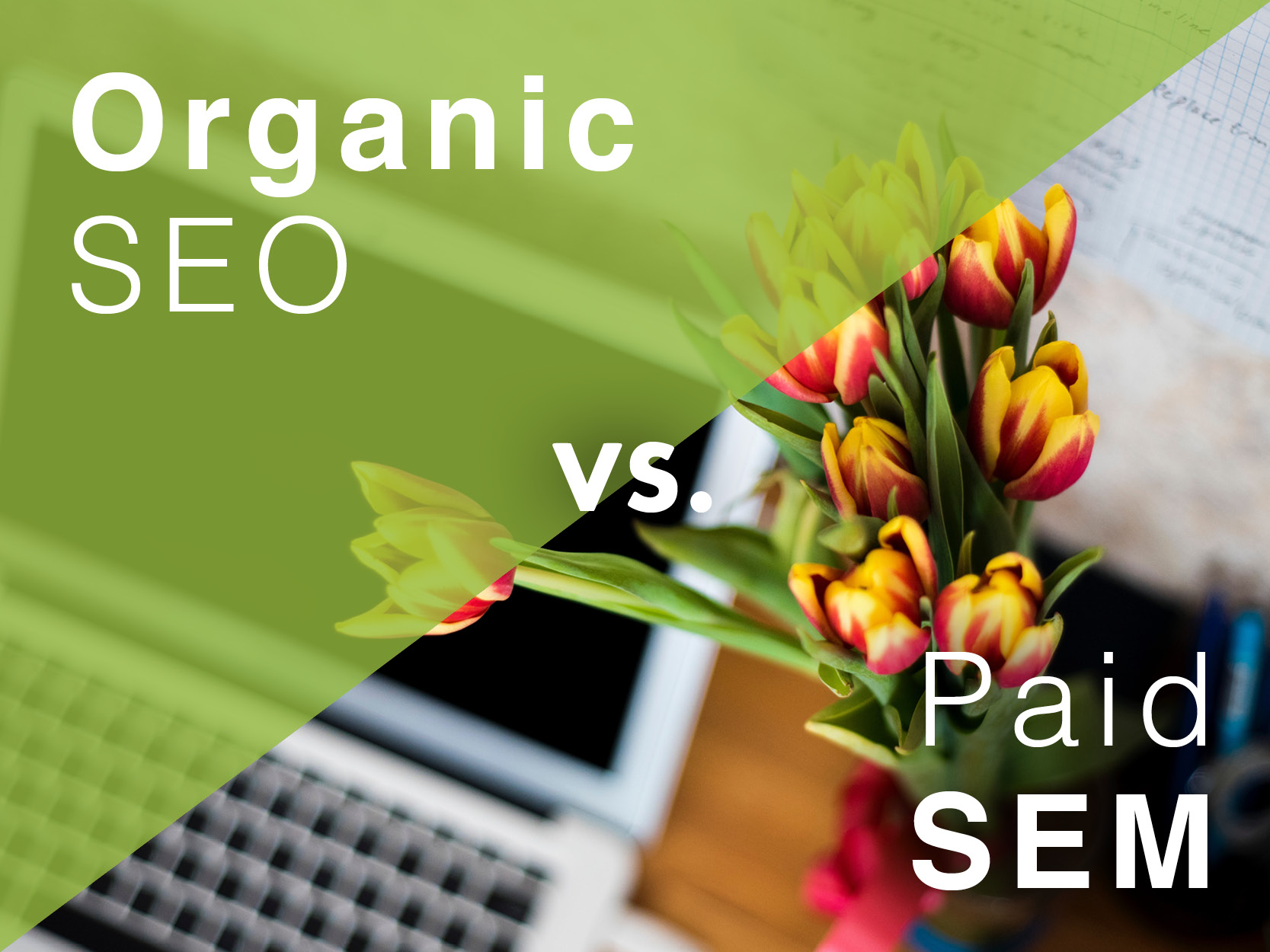 The keys to finding your business online - Organic SEO v. Paid SEM - R.C.Brayshaw & Company